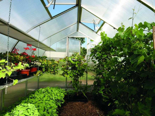 Interior of a greenhouse organized with shelves and other accessories