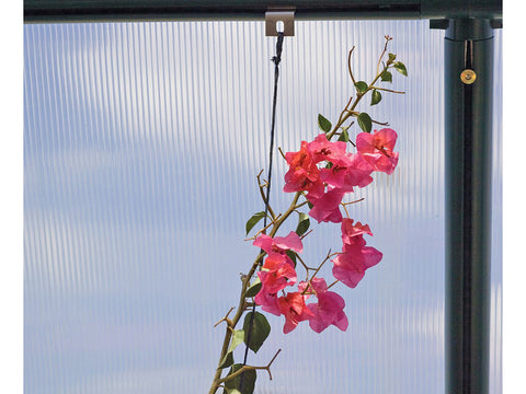 Image of Rion Hanging & Anchoring Kit with hanging flowers