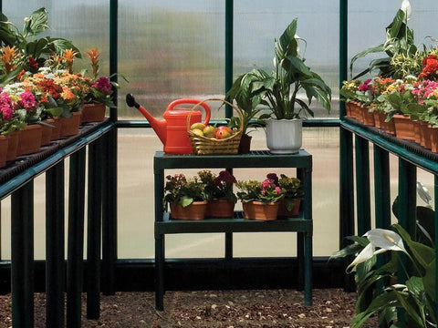 Image of Rion Two Tier Staging Bench in the center with plants