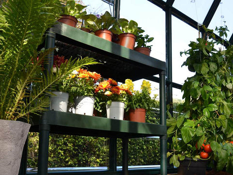 Image of Rion Two Tier Staging Bench - with plants