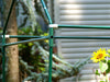 Image of Framework of Riverstone Eden Mini Greenhouse with flowers