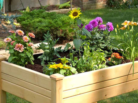 Riverstone Eden Mini Greenhouse - growing bed with plants and flowers