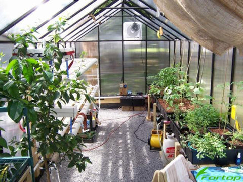 Image of Riverstone Monticello Greenhouse 8x12 - Mojave Package - interior view - with plants and flowers