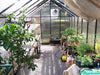 Image of Riverstone Monticello Greenhouse 8x8 - interior view with plants
