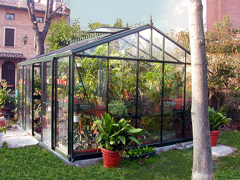 Image of Janssens Royal Victorian VI46 Greenhouse 13ft x 20ft in use with plenty of plants inside