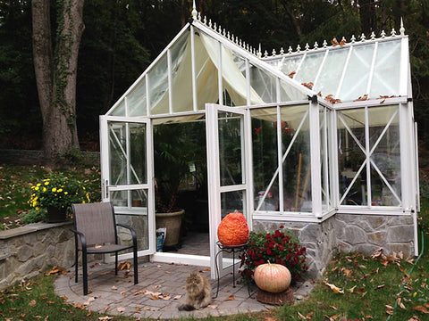 Image of Frontal side view of the Janssens T-Shaped Royal Victorian Antique Orangerie with open double swinging door