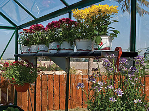 Shelf Kit for the Palram Greenhouses - installed in a greenhouse - with plants