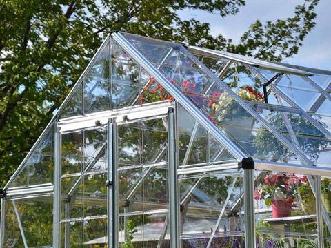 Image of Palram 8ft x 8ft Snap & Grow Hobby Greenhouse - HG8008 - upper front view