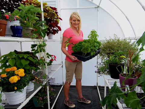 Solexx  8ft x 12ft Harvester Greenhouse G-412 - a woman inside the greenhouse a pot with plants