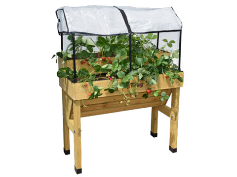 Image of Strawberry Planter Kit
