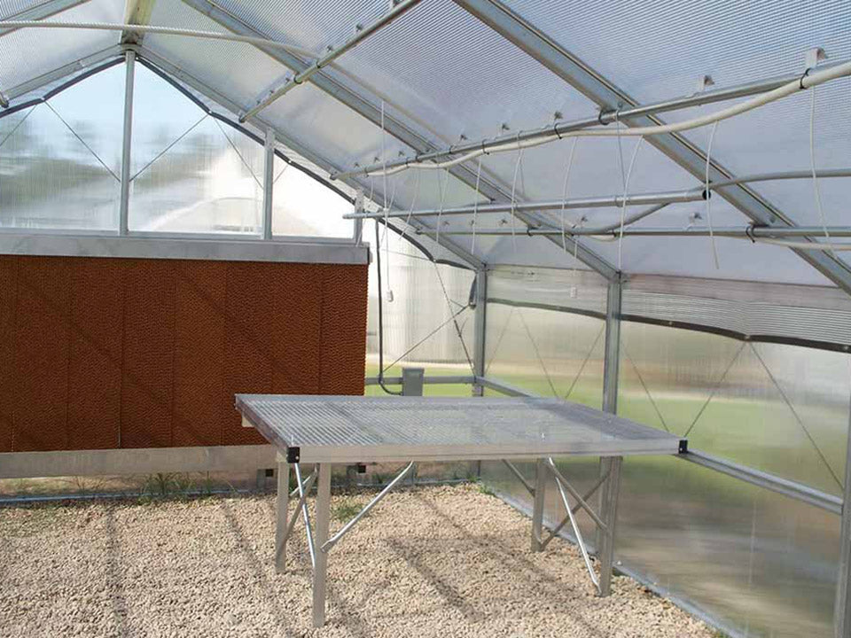 Riverstone Industries (RSI) 16ft x 24ft Wallace Premium Edition Educational Greenhouse R16248-P(G) - commercial workbench