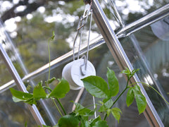 Trellising Kit Pro for the Palram and Rion Greenhouses- side view with plants