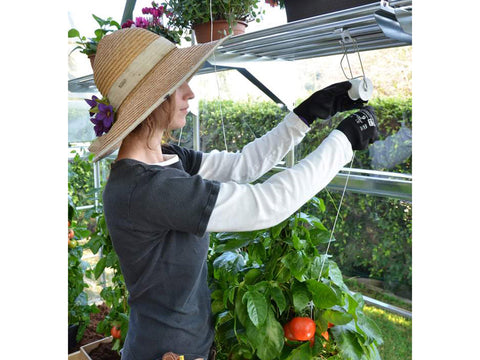 Image of Trellising Kit Pro for the Palram and Rion Greenhouses -  a woman arranging the trellis