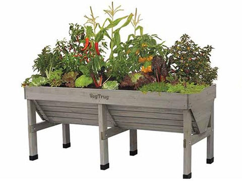 Image of Medium Grey Wash Colored VegTrug with plants
