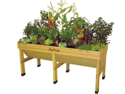 Image of Medium Natural Wood colored VegTrug with plants