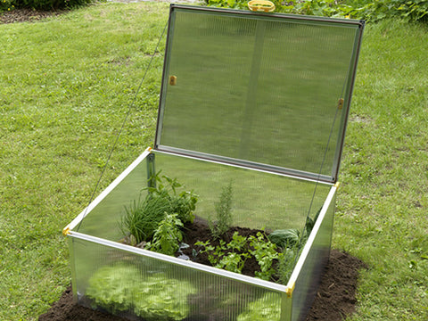 Open BioStar 1000 Cold Frame in garden