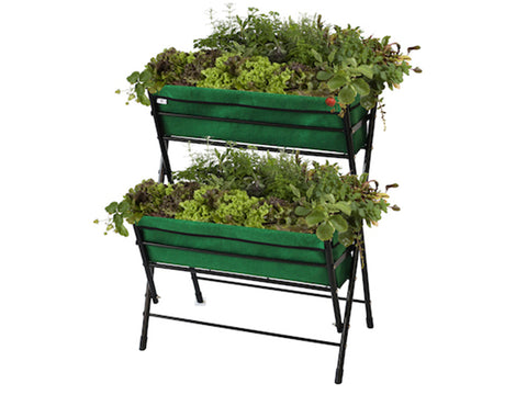 Dark Green Poppy Go Two Tier with plants