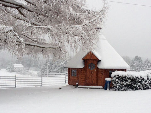 Image of Winter View KOTA Grillhouse