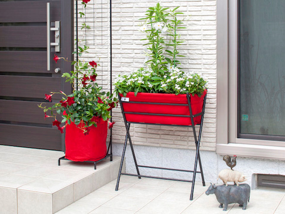 Red Poppy Go VegTrug with plants and matching red planters