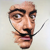 Salvador Dalí Paintings