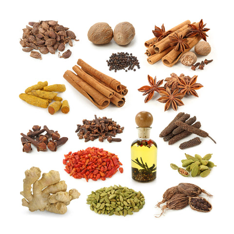 Amazing Spices of India by Sina Irani