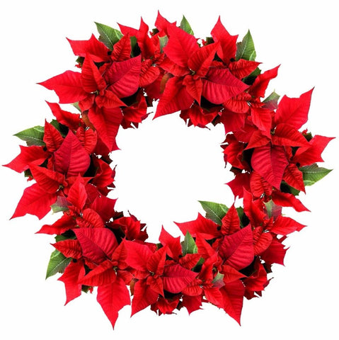 Christmas Coloured Wreath