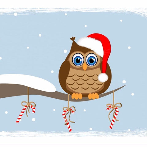 Owl in Santa Hat