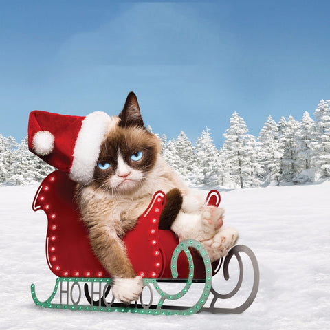 Grumpy Cat in Christmas
