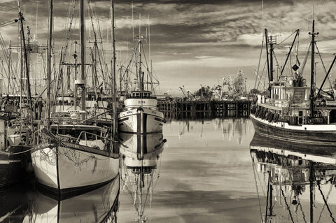 Fishing Boats At Dock by Lone Tree Photography