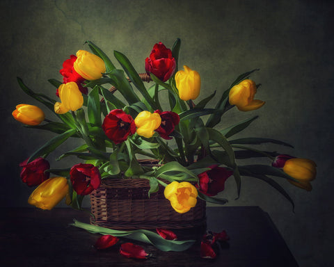 Still Life With A Basket Of Tulips