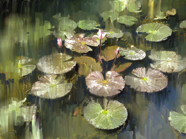 Artwork of Lily Pond by Usha's Fine Art Creations