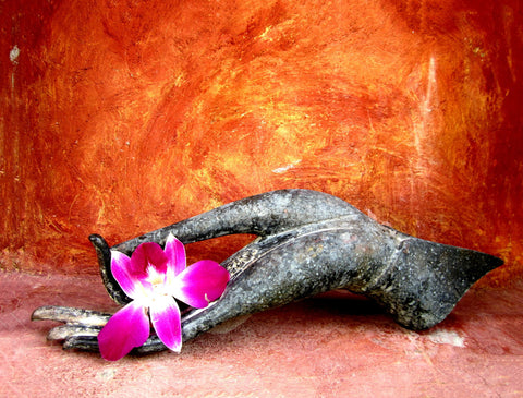 Lotus Hand Position With Flower by Sina Irani