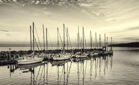 Sailboats At Crack Of Dawn - Canvas Prints