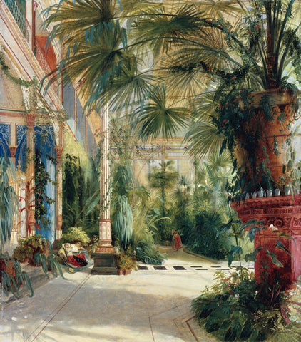 The Interior Of The Palm House