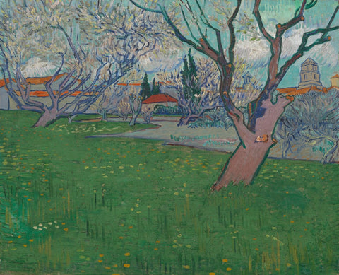 Orchards in Blossom View of Arles
