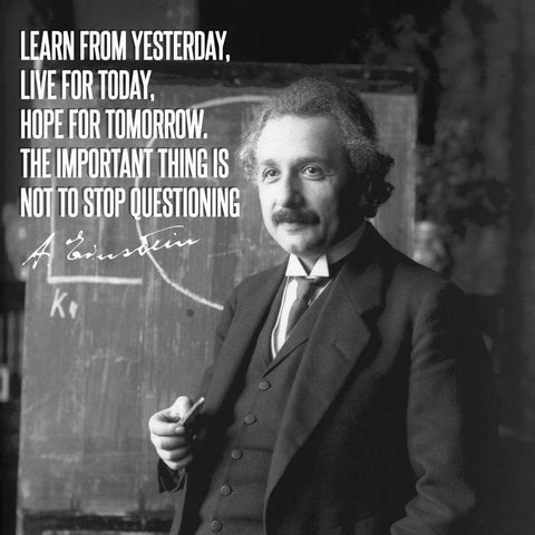 Motivational Poster - Learn From Yesterday Live For Today Hope For Tomorrow The Important Thing Is Not To Stop Questioning - Albert Einstein - Inspirational Quote by Roseann Jahns