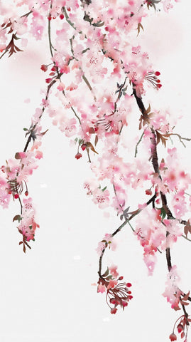 Cherry Blossoms In Bloom – Contemporary Japanese Floral Painting - Posters