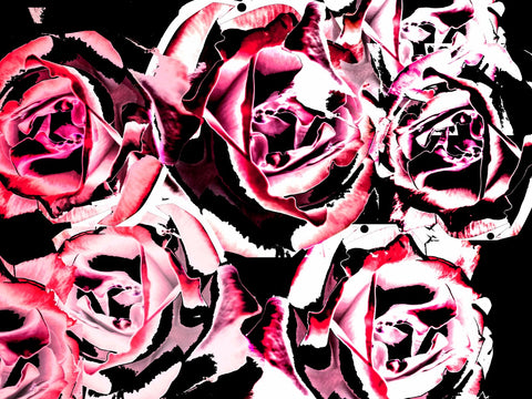 Abstract Art - Steel Roses