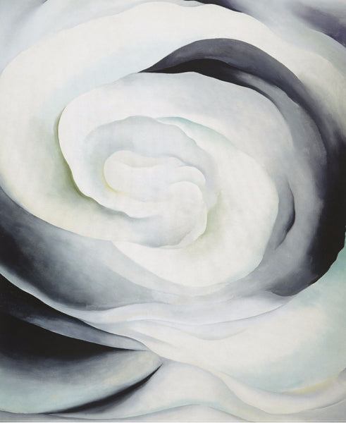 Abstraction White Rose 1 - Art Prints
