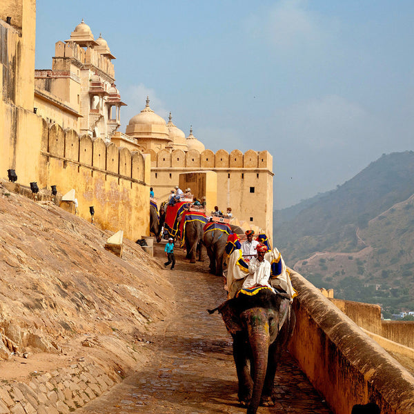 Photograph of Amber Fort by Tallenge Store