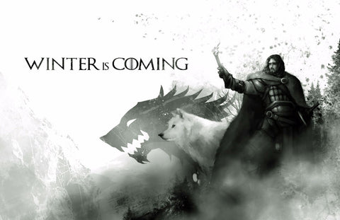 Art From Game Of Thrones - Winter Is Coming - Jon Snow And Ghost - Posters by Hamid Raza