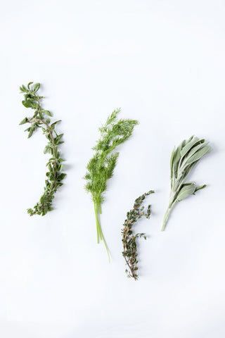 Beautiful Herbs by Sherly David