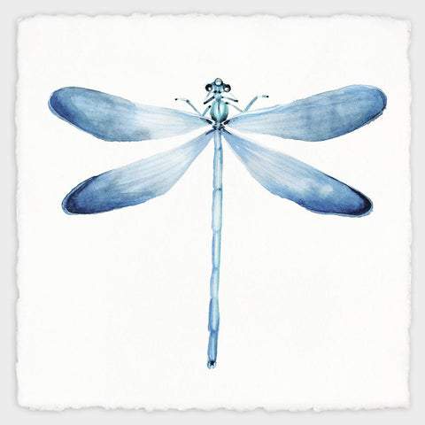Blue Dragonfly - Nature Painting