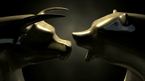 Bull Vs Bear Face Off- Graphic Art Inspired By The Stock Market by Christopher Noel