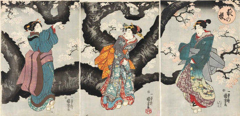 Cherry Blossoms at Night  (Yoru no sakura) - Japanese Woodblock Print - Utagawa Kuniyoshi - Posters