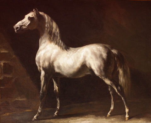 Cheval Arabe Gris-Blanc - Art Prints