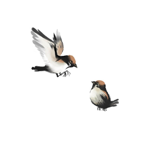 Chickadee Sparrows - Ink Painting - Bird Wildlife Art Print Poster