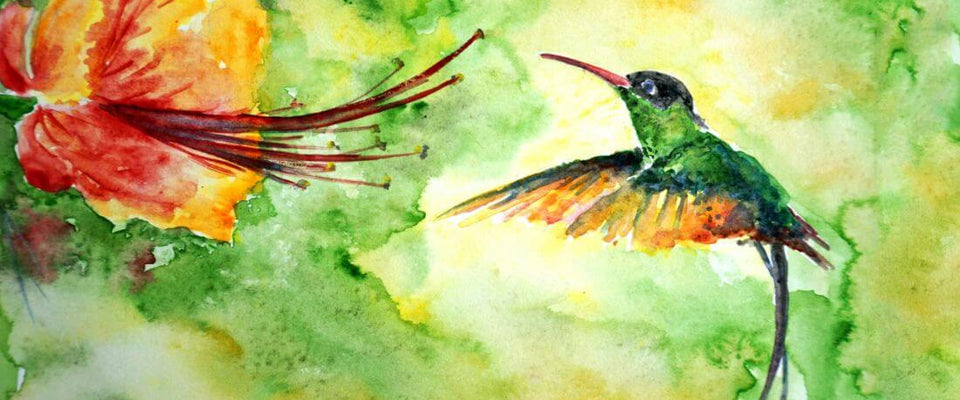Colibri Hummingbird - Colorful Painting - Bird Wildlife Art Print Poster by Sina Irani | Buy Posters, Frames, Canvas  & Digital Art Prints