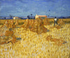 Corn Harvest in Provence - Canvas Prints
