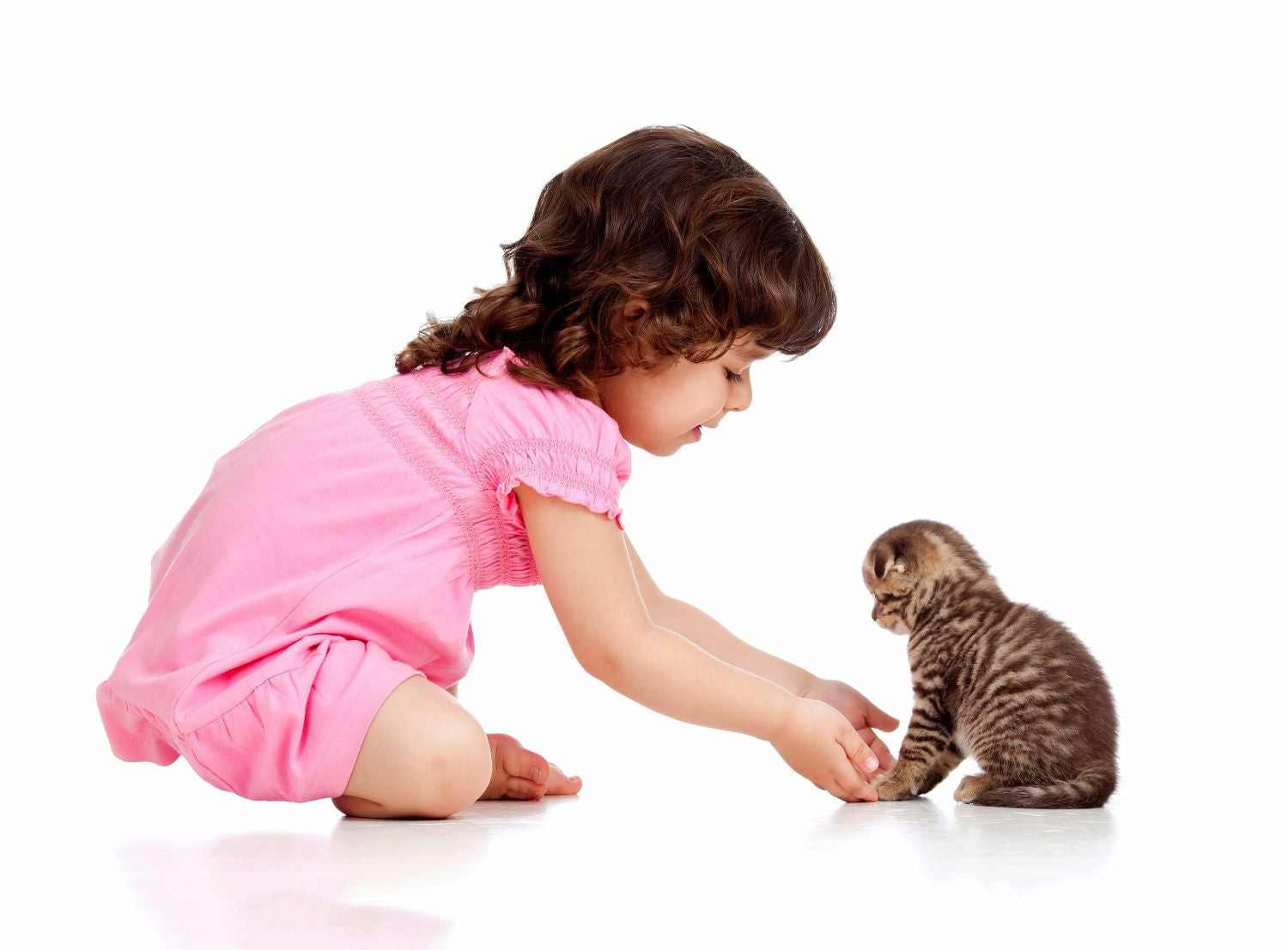 Cute Baby Girl With Her Kitten Life Size Posters By Sina Irani